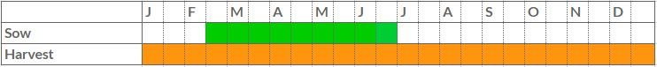 Chard growing calendar