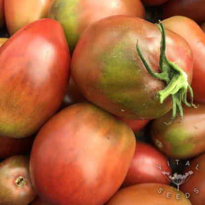 Tomato - Purple Ukraine